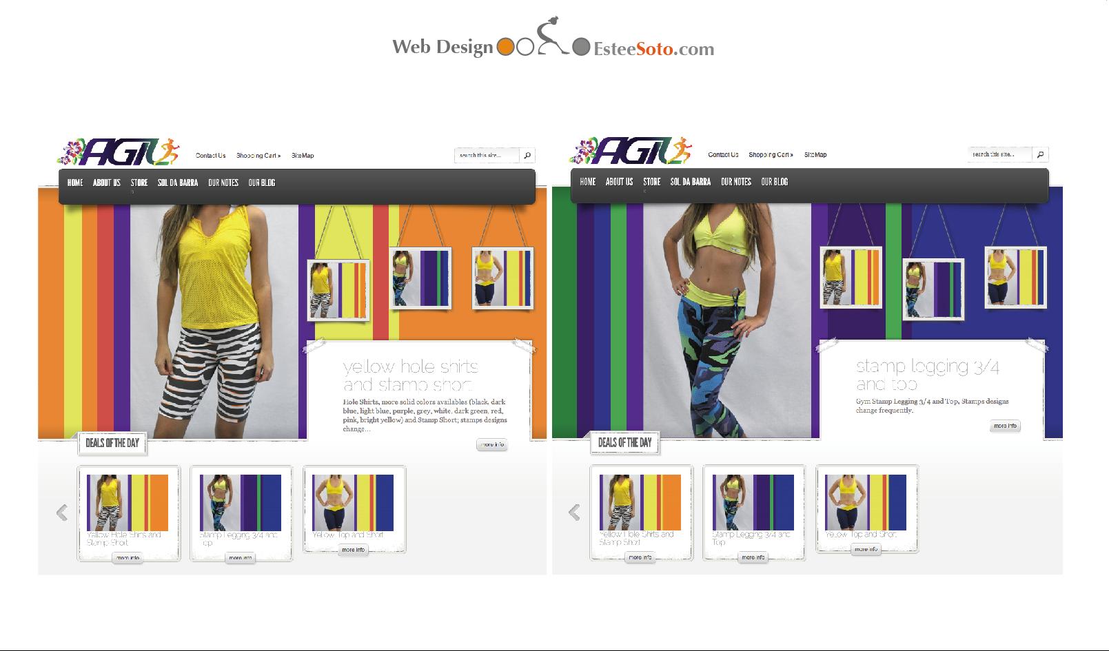 AgilStore.com Website
