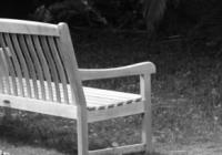 Fairchild Garden | Wooden Bench